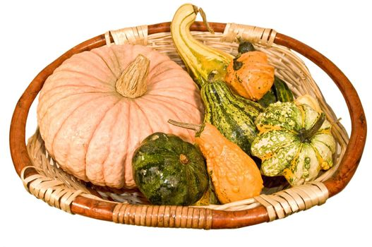 Basket with pumpkins of different types and sizes