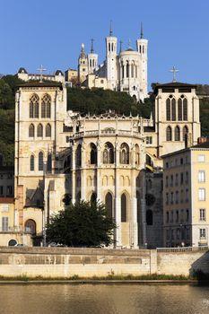 Lyon faith