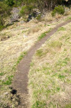 curve of path
