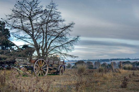 old cart in field