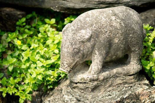 Stone statue of a pig in Grand palace, Bangkok, Thailand