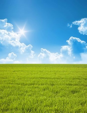 A photography of a blue sky and a green field