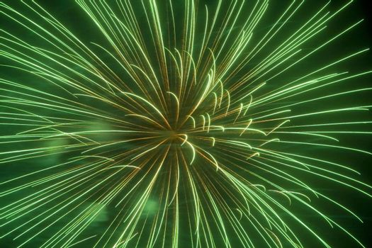 Holiday fireworks on the night sky