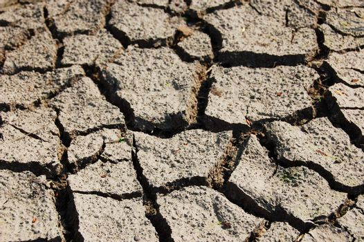 dry and cracked soil in hot summer on a farm