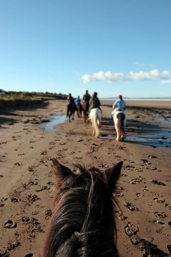 a riders view of a pony ride on a beautiful beach in county kerry ireland