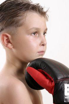 Boxer Champ