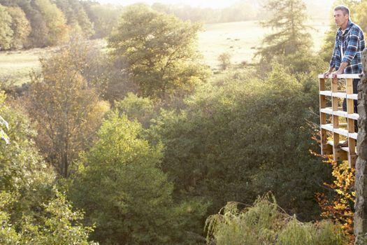 Man Standing On Wooden Balcony Overlooking Autumn Woodland