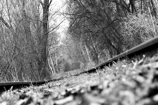 Closeup of railroad tracks