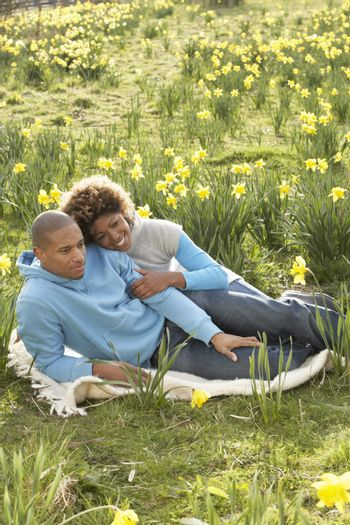 Couple Relaxing In Field Of Spring Daffodils