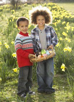 Two Boys Having Easter Egg Hunt In Daffodil Field