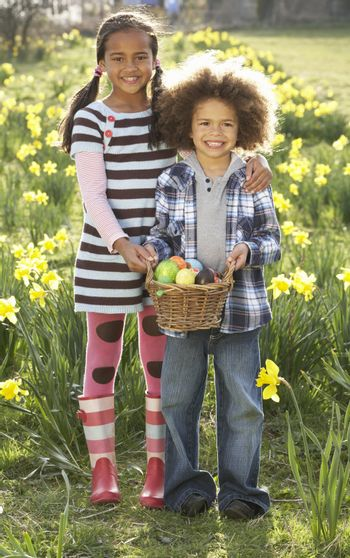 Brother And Sister Having Easter Egg Hunt In Daffodil Field