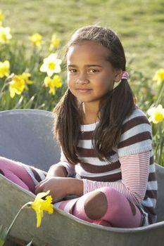 Girl On Sitting In Wheelbarrow In Daffodil Field