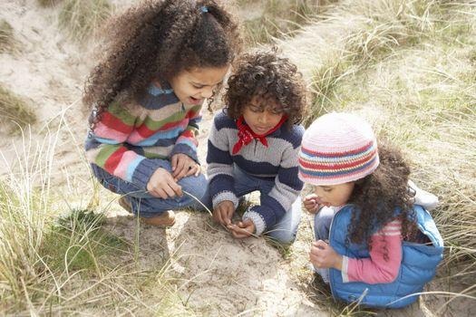 Children Playing In Dunes On Winter Beach