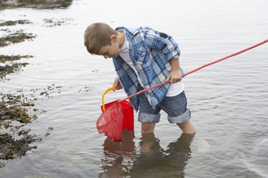 Boy collecting shells
