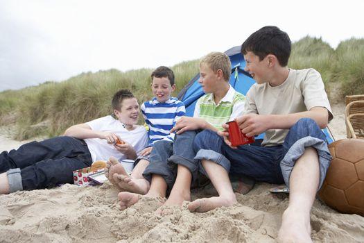 Teenagers having picnic