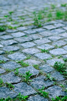 road of grey stones