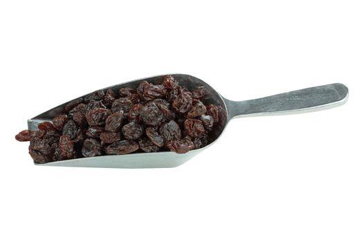 Scoop of Raisins