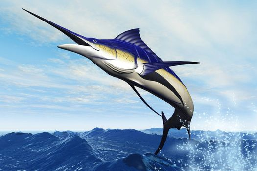 A sleek blue marlin bursts from the ocean surface in a grand leap.