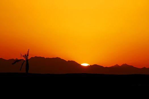 Egyptian Sunset