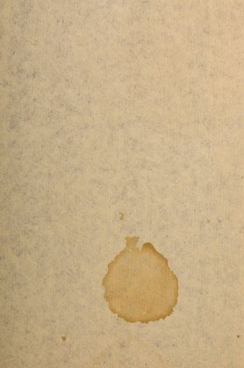 Page of old run-down paper with a stain