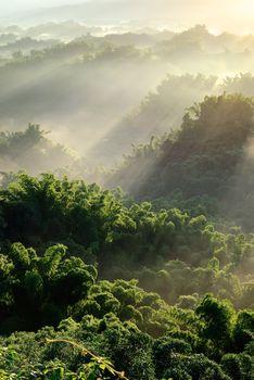 Sunlight with mist