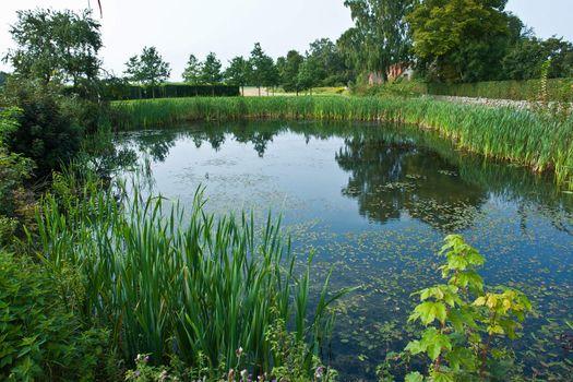 Beautiful countryside lake pond summer landscape perfect nature background image