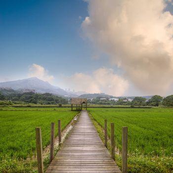 Attractive rural scenery