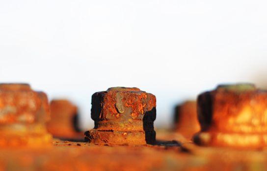 old screw