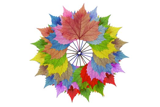 Circles, multi-colored leaves.