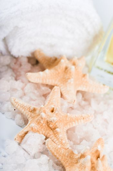 seasalt, towel and starfish