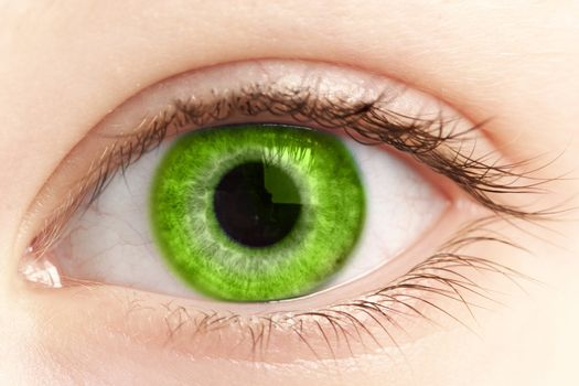 green eye of the person close up