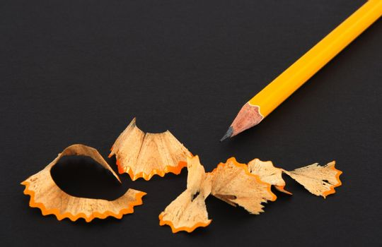 Sharpened pencil and wooden shavings
