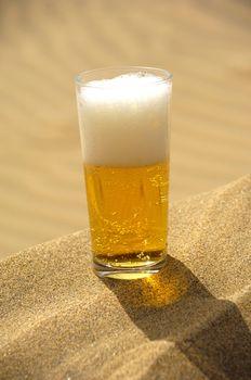 Beer in desert