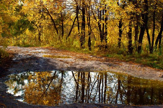middle of autumn, Indian summer in the south of Western Siberia