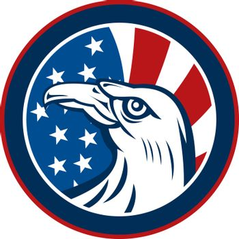 American eagle with stars and stripes flag