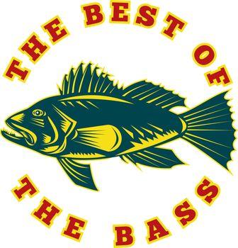 Sea Bass the best of bass