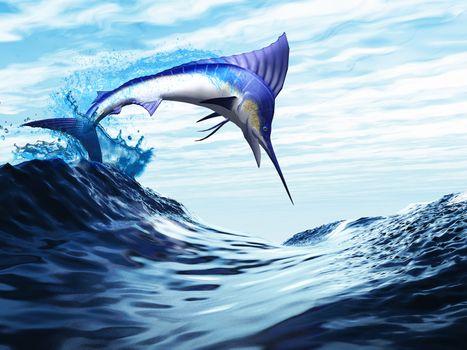 A beautiful blue marlin bursts through a wave in a spectacular jump.