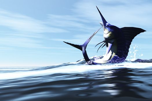 A Blue Marlin jumps through the ocean surface in a spray of water.