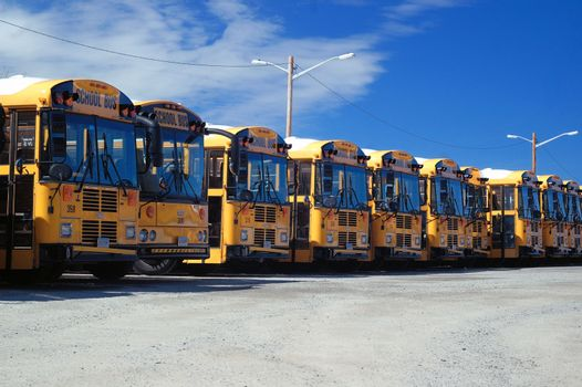 A row of school bus parked in a parking lot