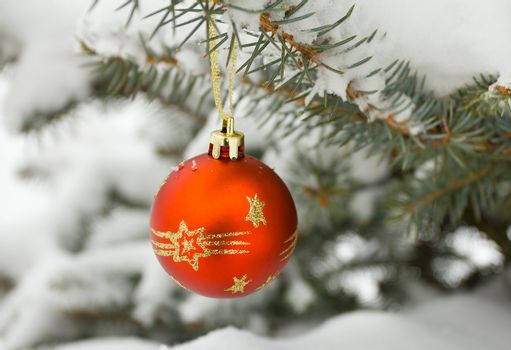 christmas decoration on fir branch outdoors