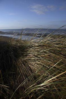 a winters beach in ireland
