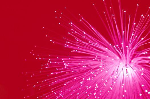 Vivid red fibre optics.
