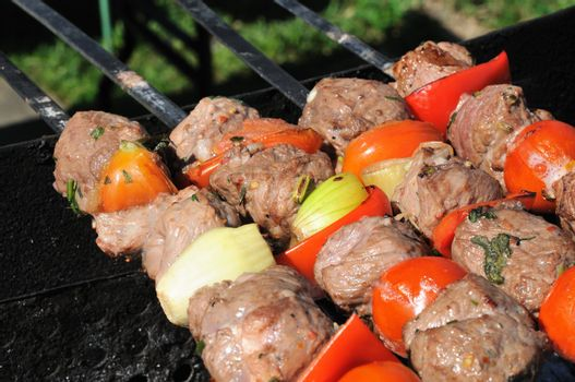 Kebabs, threaded on a skewer and grill.