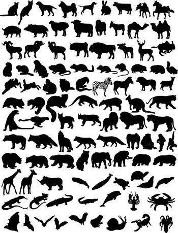 A hundred black silhouettes of different animals