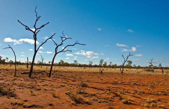 australian landscape in the red center, australian desert