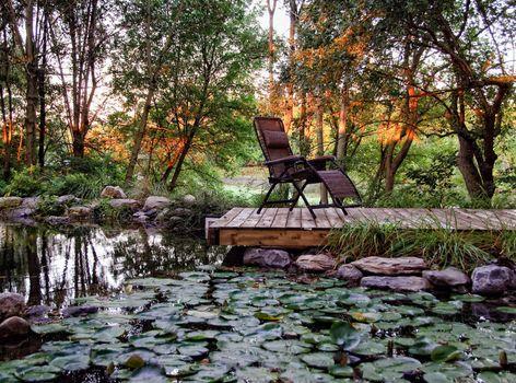 Residential landscaped garden