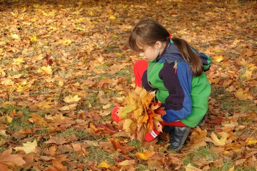 Girl collecting leaves in a park