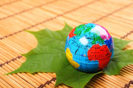 globe and leaf showing nature concept with copyspae
