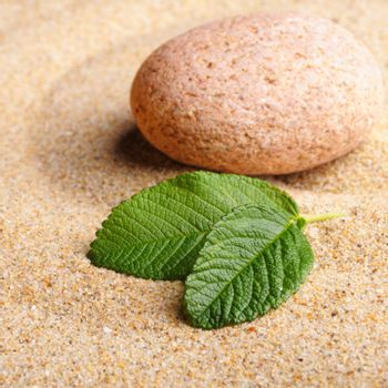 zen garden with stone or pebble on sand with leaf