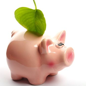 save the nature concept with piggybank an green leaf